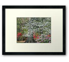 Sprinkles of Blossoms Framed Print