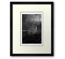 Setting Sail In The Morning Mist Framed Print