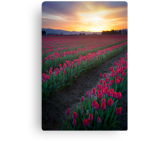 Skagit Valley Dawn Canvas Print