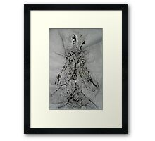 Woman Slayer, Romney  No More Rights!!!! Framed Print