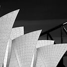 Sydney Opera House with bridge backdrop by Sheila  Smart