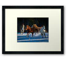 Chasing Horses Framed Print