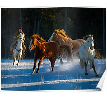 Chasing Horses Poster