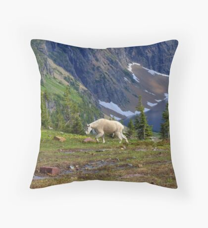 Hidden Landscape Throw Pillow