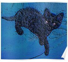black kitten hunter reclining Poster
