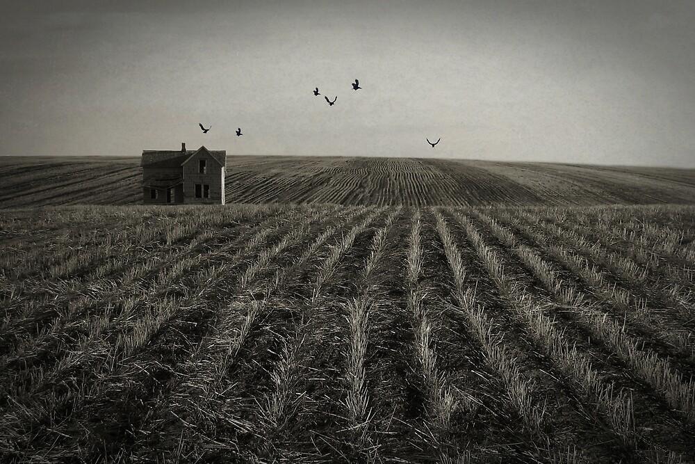 Despair by Carol Knudsen