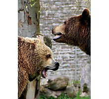Bear Battle Photographic Print