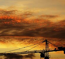 Crane at Dusk by Adam Symes