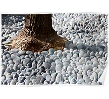 surrounding by stones. Poster