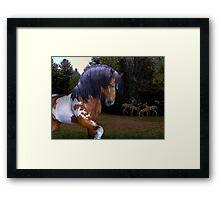 The Wild Stallion ..  Framed Print