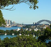 Sydney View by Sharon Brown