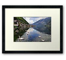 Swans in Hallstatt, Austria Framed Print