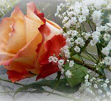 blushing beauty by bubblehex08