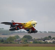 Hawker Hunter G-PSST by Nigel Bangert