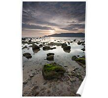 Rocks & Mosses Poster