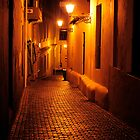 Cobblestone alleyway in Old San Juan by avresa