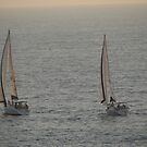 Boats like Twins - Lanchas como Gemelas by PtoVallartaMex