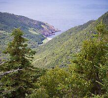 Cape Breton Island  by Natalie Ord
