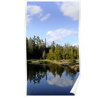 Spring At The Beaver Pond Poster