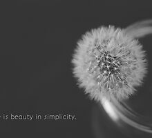 Beautiful Simplicity Dandelion  by Andrea Hurley