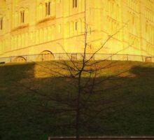 Norwich Castle Museum, England Sticker