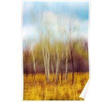 Prairie Impression Poster