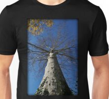 Towering Autumn Sycamore Unisex T-Shirt