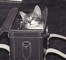 Kitbag by NevilleNewman