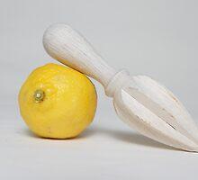 Lemon and Juicer by lynnsavarese