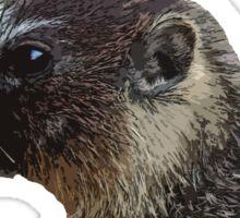Rocky Mountain Marmot Sticker