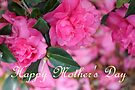 Happy Mother's Day by AuntDot