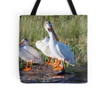 The Look Out Tote Bag