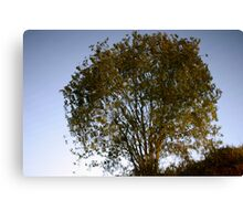 reflection of a tree in mirror still water Canvas Print