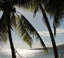 Tropical Paradise In Fiji by MissKat77