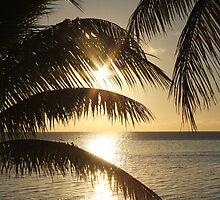 A Fijian Sunset Through The Palm Trees. by MissKat77