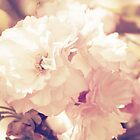 Vintage Spring Blooms by Shannon Ferguson