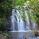 Ellinjaa Falls by Bevlea Ross