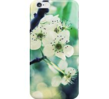 Teal Garden iPhone Case/Skin