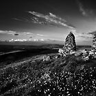 Stone Stacks, Skipton Moor, Yorkshire, United Kingdom by Jim Round