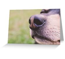 THE NOSE KNOWS Greeting Card