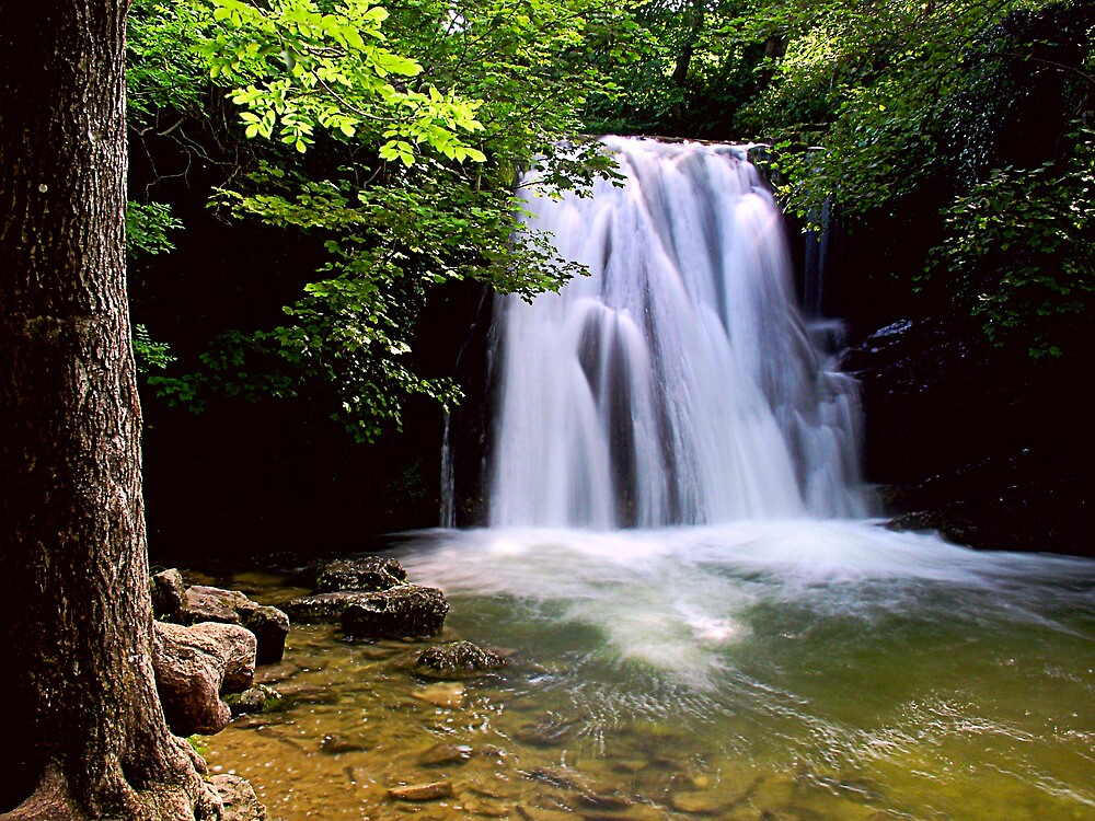 Janets Foss, Yorkshire Dales by Jim Round