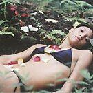 Cheyenne Petals by efleming