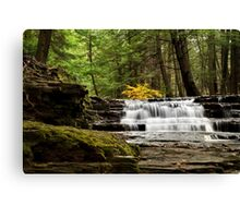 Soothing Waterfall Canvas Print