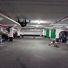 Crazies in the car park! by Gary Cummins