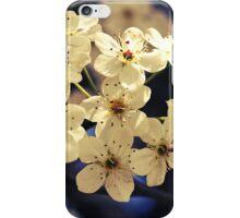 Topaz Blossoms iPhone Case/Skin