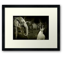 Friends Come In All Forms Framed Print