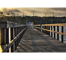Walking the Planks Photographic Print