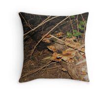 Polyporous badius Covered Laydown Log Throw Pillow