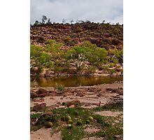 Wild Pumpkins - Ross Graham Gorge - Kalabarri Photographic Print