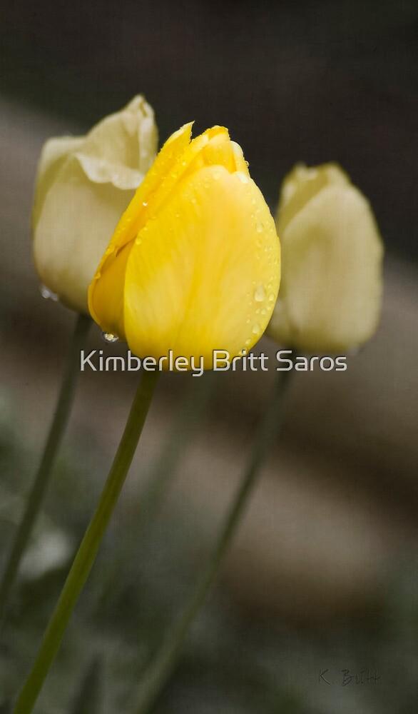 Sunshine After the Rain by KBritt
